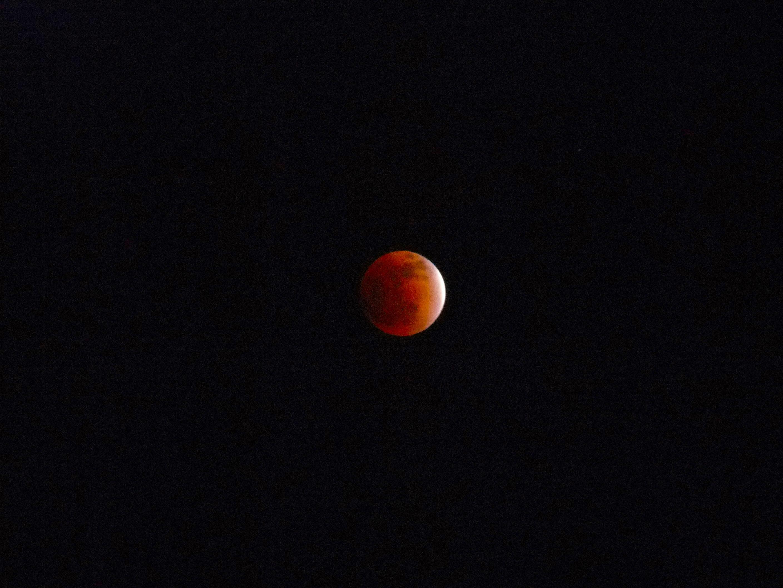 红月亮5张